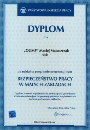 dyplom-pip-www